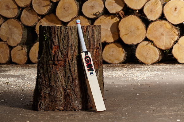GM Rory Burns Players Edition Cricket Bat