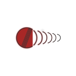 Headly Heavy Cricket Tennis Ball